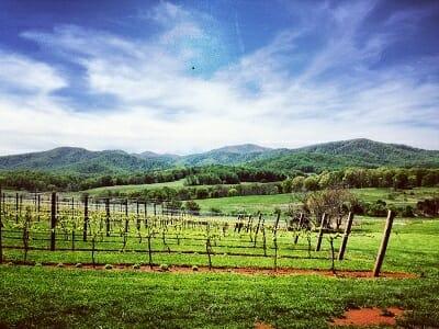 Charlottsville landscape